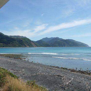 Coastal Pacific en een ferry